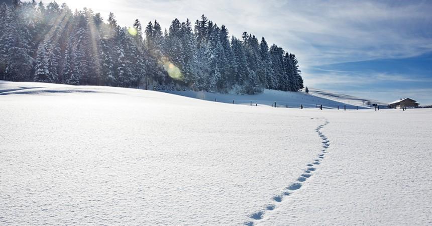 Footprints on snowy hill